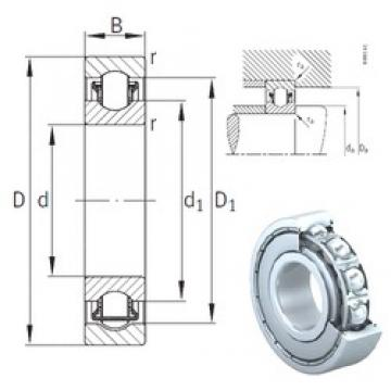 INA BXRE303-2Z needle roller bearings