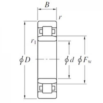 KOYO NU19/560 cylindrical roller bearings