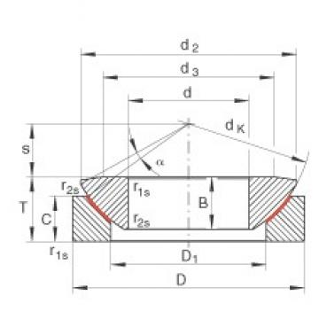 INA GE300-AW plain bearings