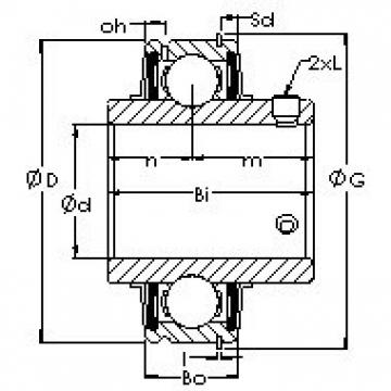 AST ER207-22 bearing units