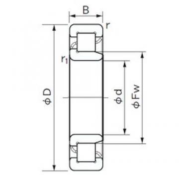 NACHI NJ 2320 cylindrical roller bearings