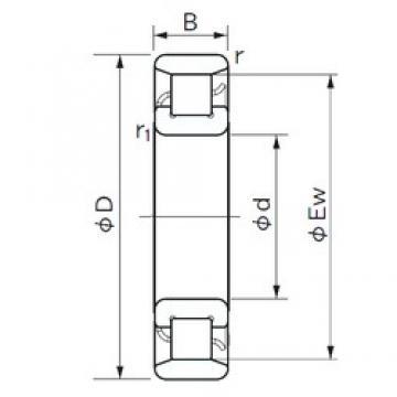 NACHI N 1038 cylindrical roller bearings