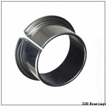 ISO 695-2RS deep groove ball bearings