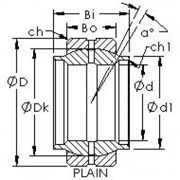AST GEWZ19ES plain bearings