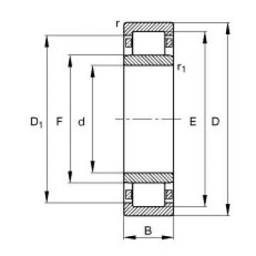 FAG NU2305-E-TVP2 cylindrical roller bearings