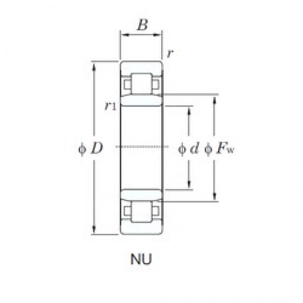 KOYO NU2305 cylindrical roller bearings #3 image