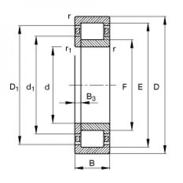 FAG NUP203-E-TVP2 cylindrical roller bearings #3 image